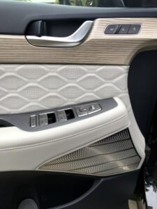 Hyundai Palisade door panel